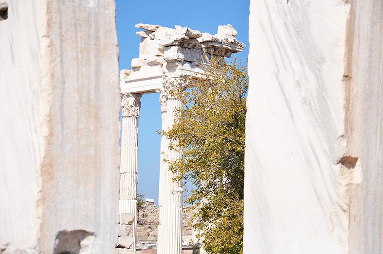Pergamum15